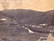 Early Tapeka